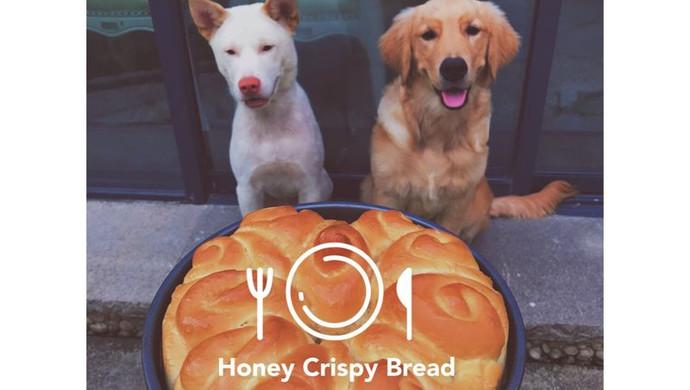 蜂蜜脆皮面包