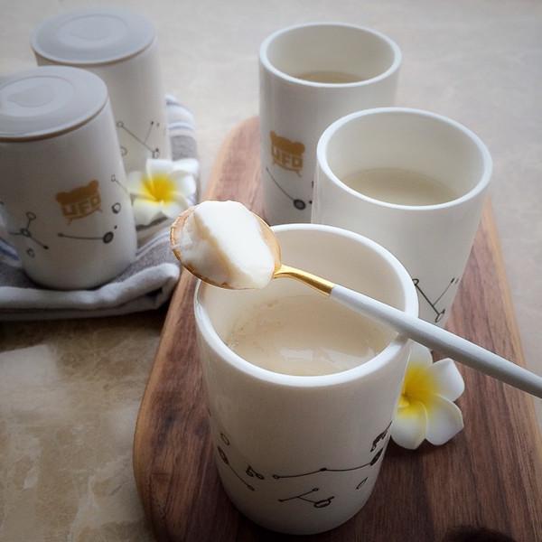 纯素酸豆乳(小熊酸奶机)的做法
