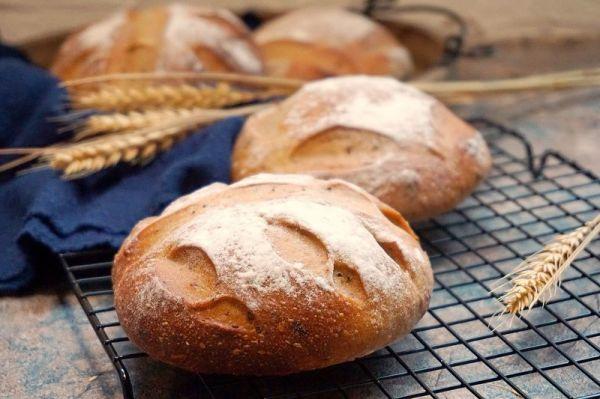 葡萄种葡萄黑裸麦面包