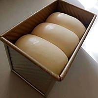 浅谈做面包的步骤和细节(5发酵)的做法图解4