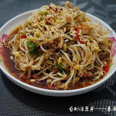 自制豆芽菜