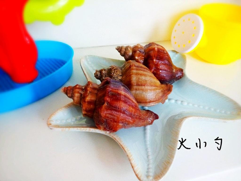 海螺的身体结构图解