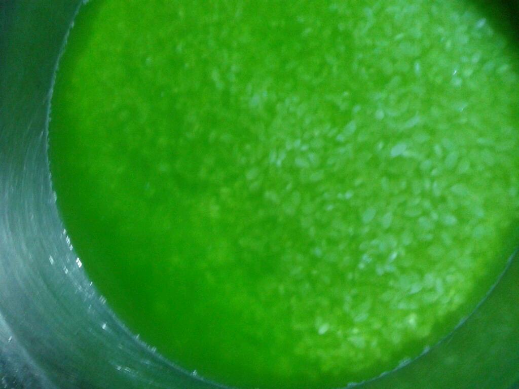 斑斓叶椰子饭图片