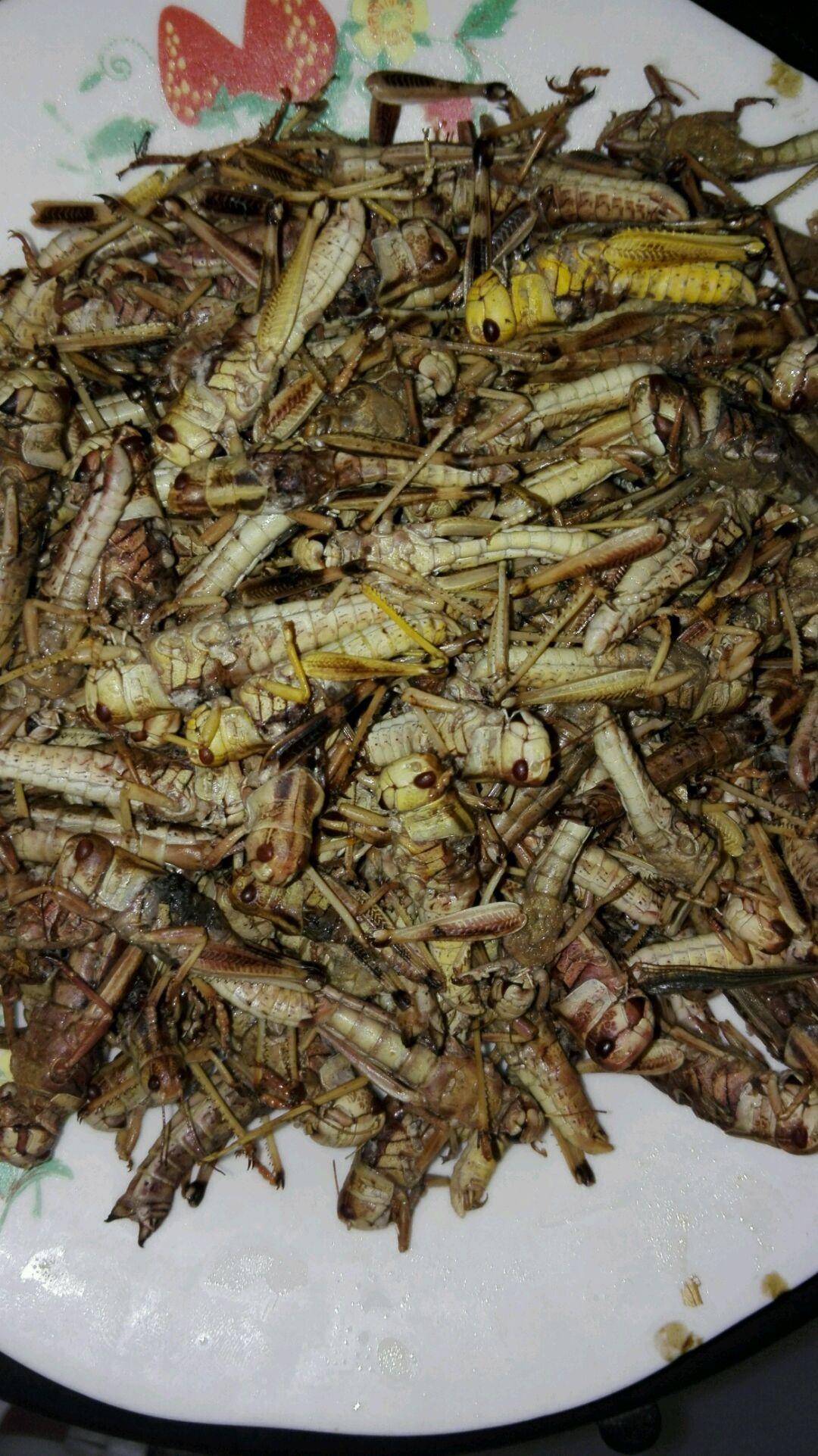 超好吃的  油炸蚂蚱的做法步骤