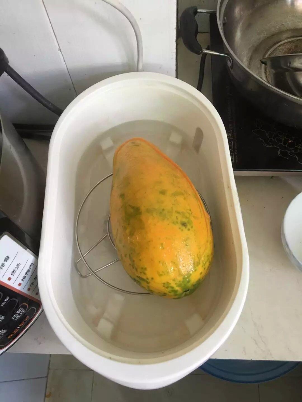 原只木瓜炖燕窝的做法图解8
