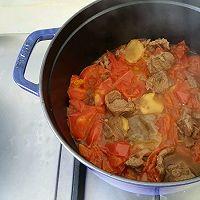 西红柿炖牛肉(牛腱,牛腩,上脑都可以)