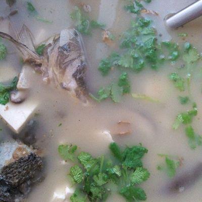 香菇豆腐鱼头汤的做法 步骤4