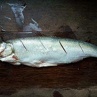 炝锅岛子鱼的做法图解1