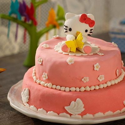 HOLLETKITY粉色双层翻糖蛋糕