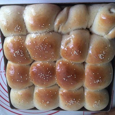 65度汤种脆底小面包的做法 步骤12