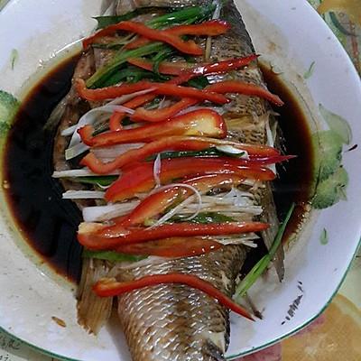 清蒸鲫鱼/ 鲈鱼