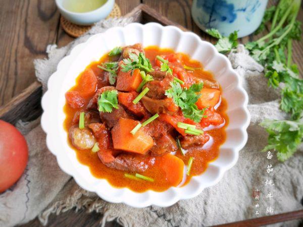 味美汤浓、开胃爽口的番茄炖牛腩的做法