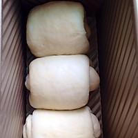 冷藏中种北海道吐司~面包机揉面的做法图解11