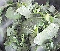 江南味道的炒青菜的做法图解5