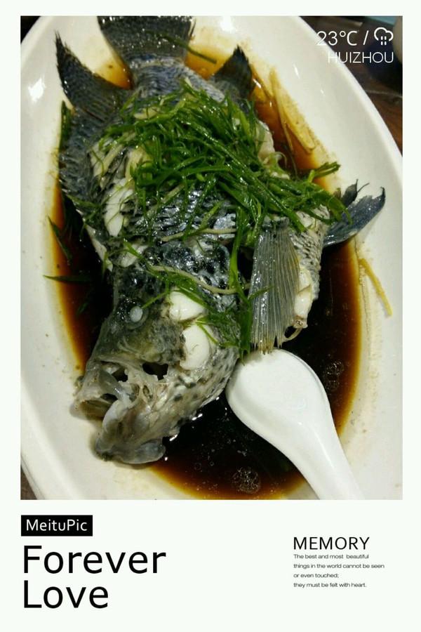 清蒸花斑鱼的做法