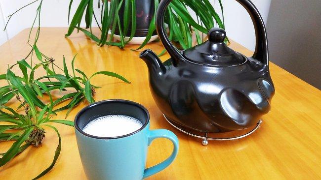 陶瓷烧水壶煮牛奶的做法