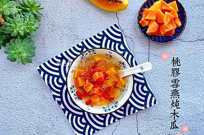 美容养颜甜品—桃胶雪燕炖木瓜