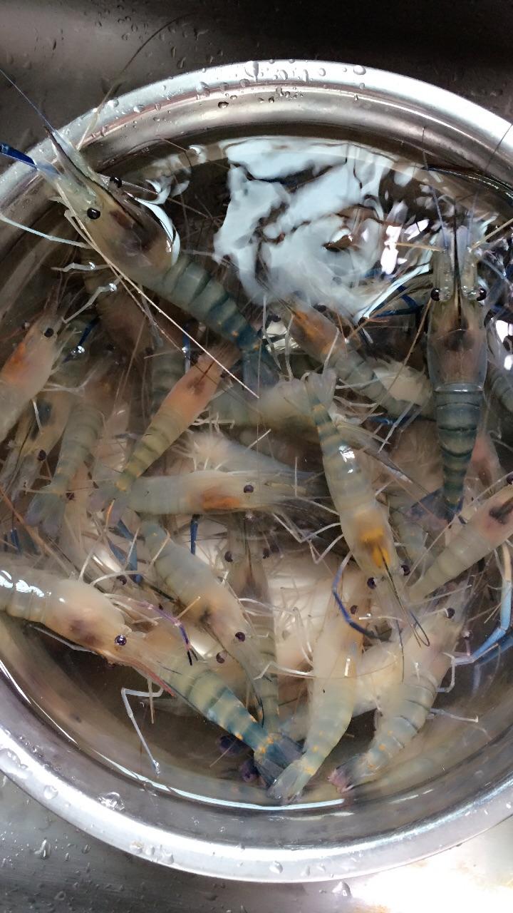 椒盐醉虾的做法步骤