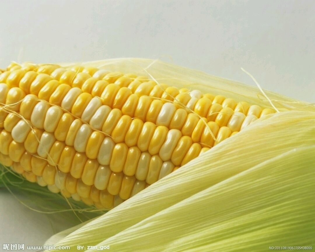 玉米排骨汤的做法步骤