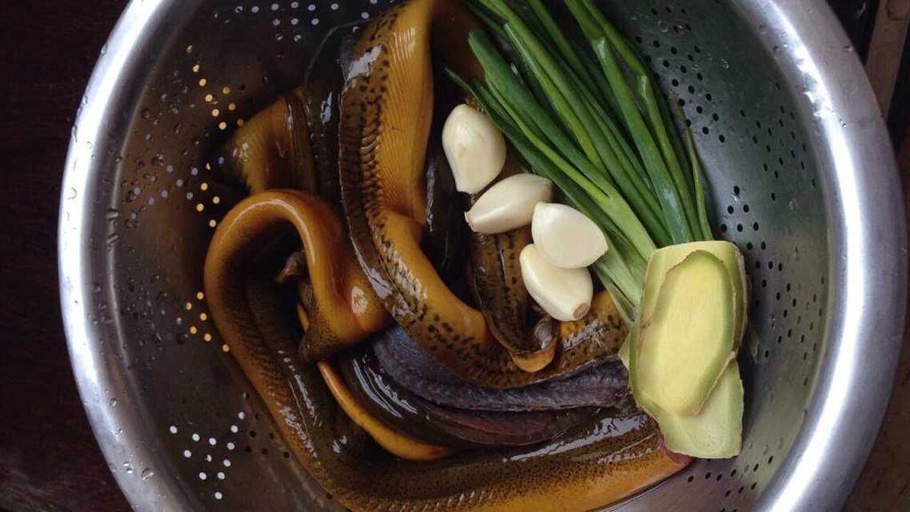 ��_传统的《兰陵熇鳝》普及下避孕药不可能使黄鳝长大