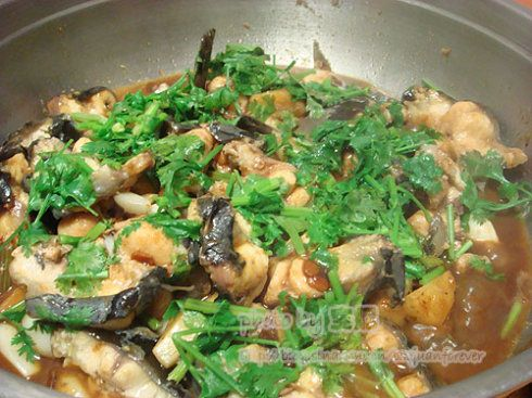 焖锅鱼的做法