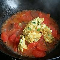 鸡蛋西红柿面条的做法图解7