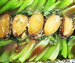 蚝油小鲍鱼的做法