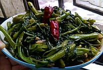 炝炒空心菜(藤菜,钢管菜)的做法