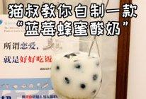 """#美食视频挑战赛#猫叔教你自制一款""""蓝莓蜂蜜酸奶""""的做法"""