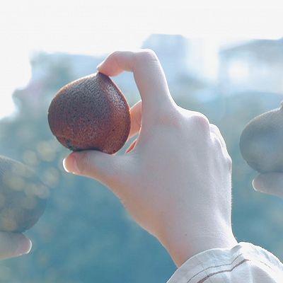 栗子玛德琳【初味日记】的做法 步骤11