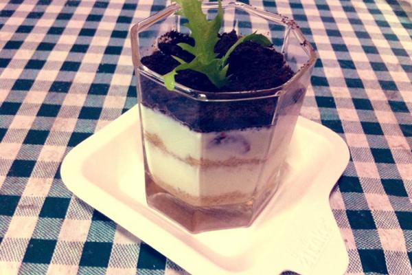 自制酸奶木糠盆栽的做法