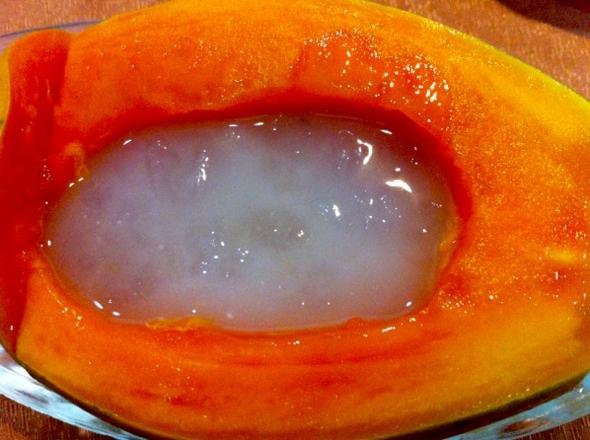 椰汁木瓜炖雪蛤_哈根达达的美食日记