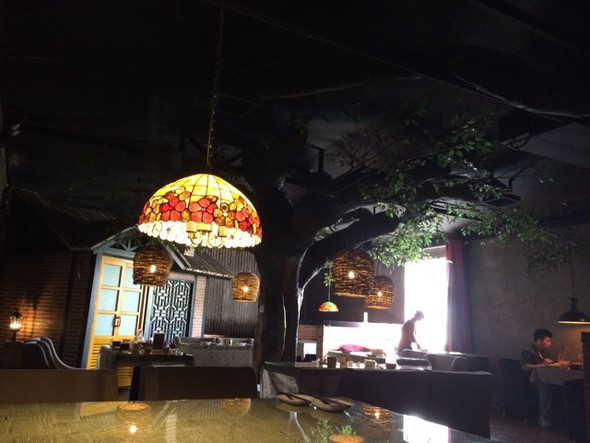 树下餐厅,大树_连玥菡的美食日记_豆果美食