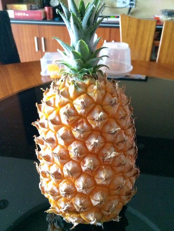 14款菠萝后尾灯电路图