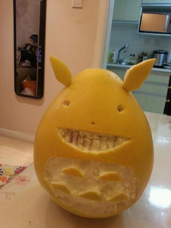 柚子龙猫图片