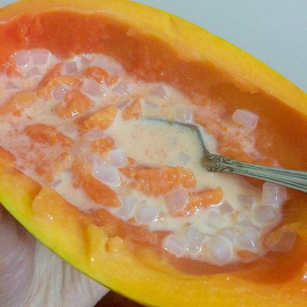yo豆小糯米的木瓜牛奶炖桃胶做法的学习成果照