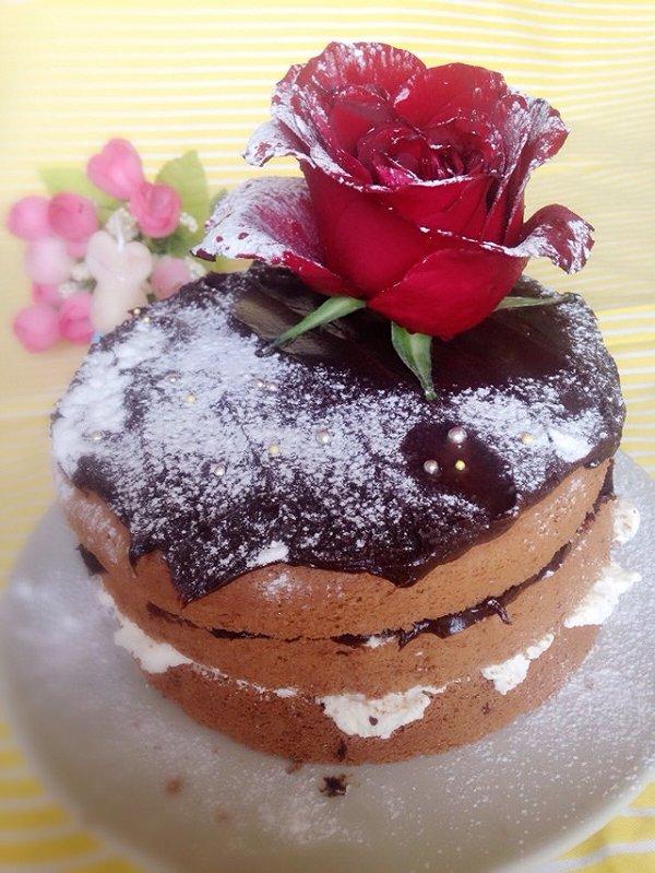 鱼饼饼做的圣诞裸蛋糕的做法_豆果美食