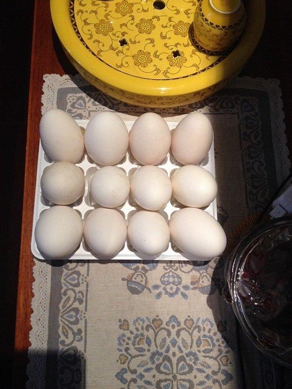 鹅蛋绘画可爱图片大全