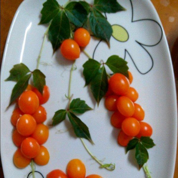 玉莹2323的简单水果拼盘做法的学习成果照 豆果美食