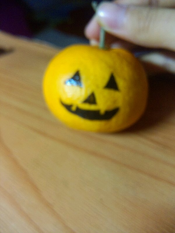 橘子diy小动物
