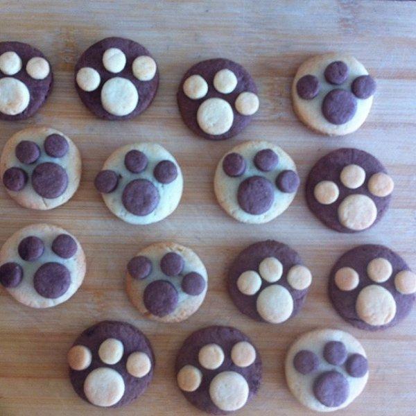 a希希宝贝的熊爪饼干做法的学习成果照
