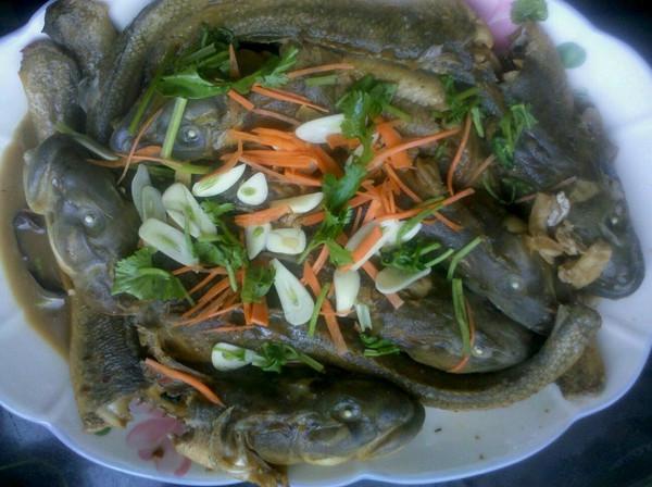 醬焖胖头鱼的做法