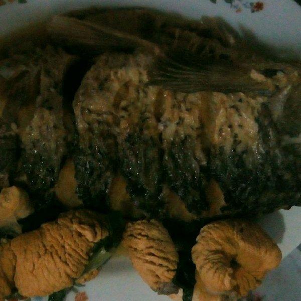 张梦雅曦的红烧鱼做法的学习成果照 豆果美食