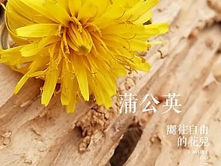 食光印记的留不住春天的脚步,也留不住淡淡花香。 