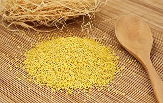 豆教授的这些米可不能乱吃!👿 每种米都有不同的功效,不是每个人都适合!
