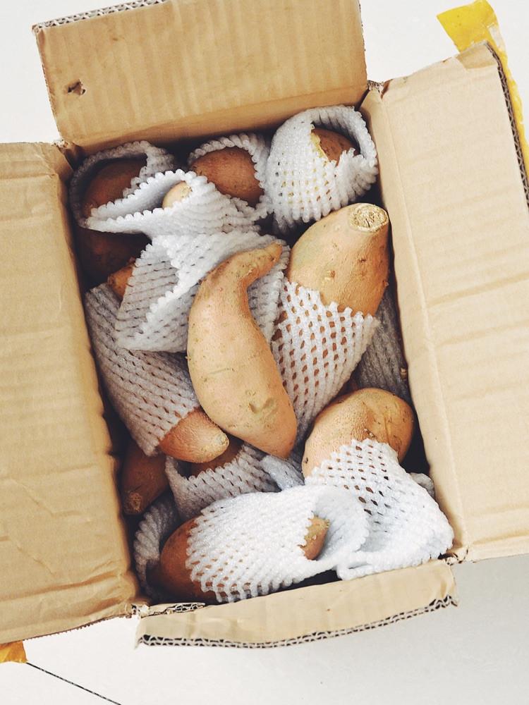 冬季必吃的暖心食物--地瓜,这种蜂蜜地瓜你吃过吗?图9