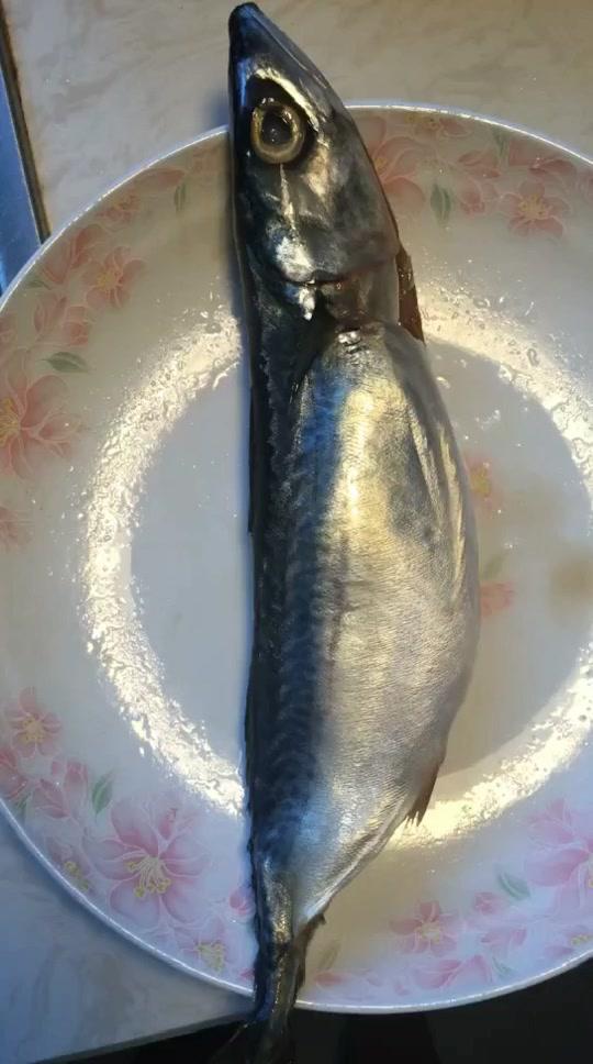 香煎小鲅鱼