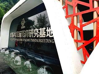LINJANE的旅游推荐【成都大熊猫繁育研究基地】