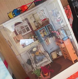 messenge的分享一个我的兴趣爱好,小房子拼装