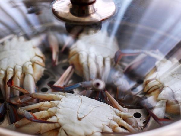 清蒸梭子蟹图5